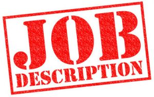 Value Advisor Job Description, Responsibilities and Qualifications